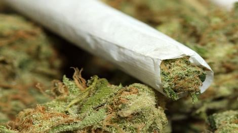 Marijuana32 Caption