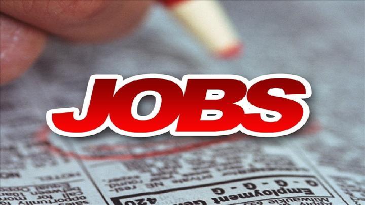 jobs_16x93 Caption