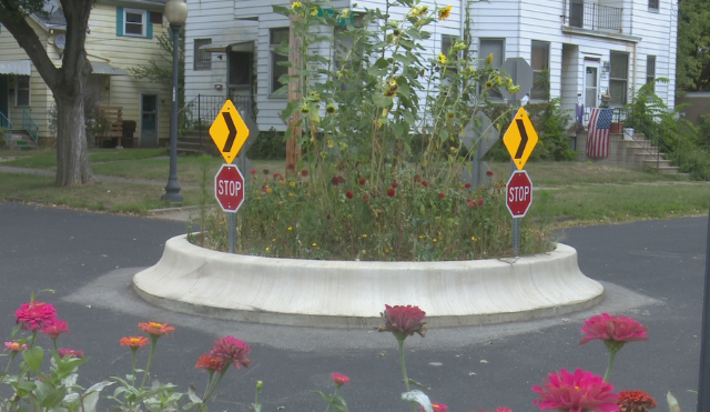 A traffic circle in the Moss-Bradley area